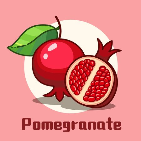 Whole and cut pomegranate modern flat design. vector illustration