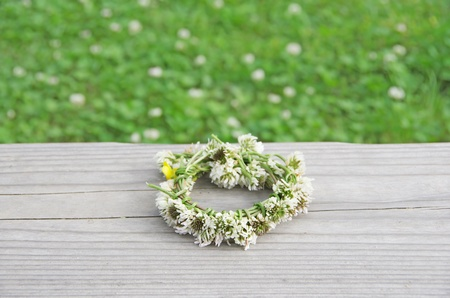 a wreath of white clovers Stock Photo - 13591699