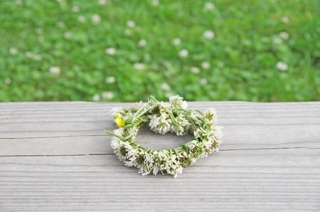 dutch clover: a wreath of white clovers