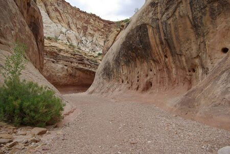 Capitol Gorge, one of the trails in Capitol Reef National Park