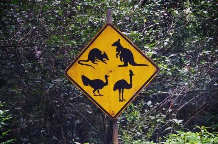 アサートン高原、オーストラリアで 4 匹の動物の交通標識
