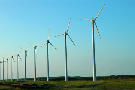 a line of windmills