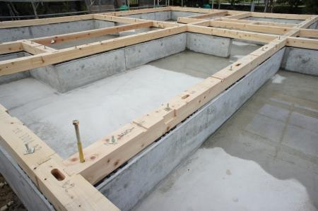 새 집의 기초