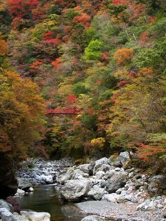 Befu Valley in autumn