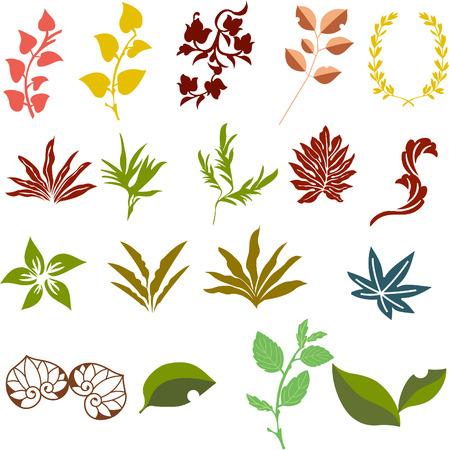 material: leaves illustration for design material
