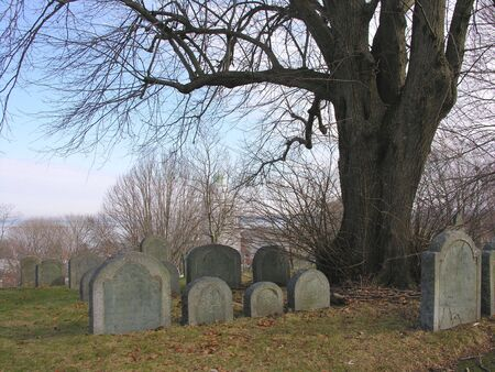 settler: Burial Hill, Plymouth, Ma