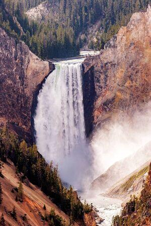 lower yellowstone falls: Lower Falls Yellowstone River Stock Photo
