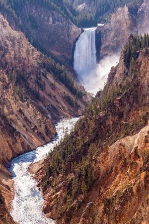 yellowstone: Lower Falls, Yellowstone River