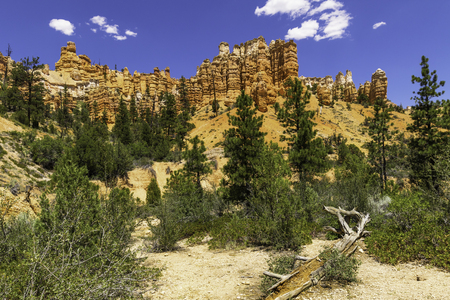 national scenic trail: Red Canyon Wall