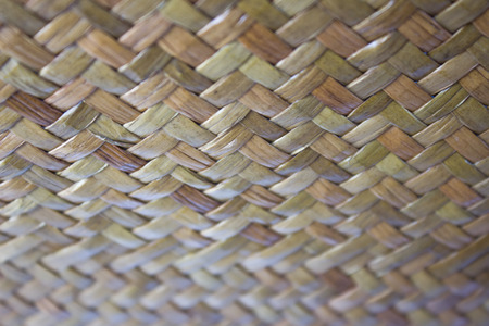 basketry: The taxtures of Thai basketry