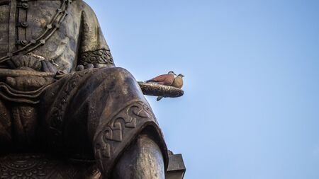 roof profile: The two pigeon living in the memorial