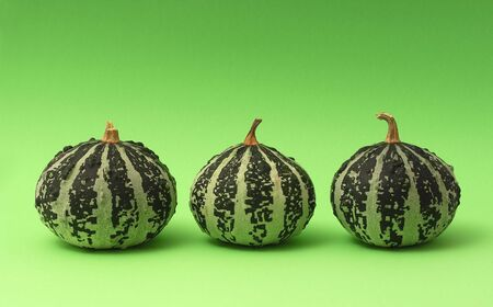 Three pumpkins on green background