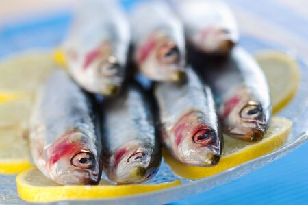 Group of sardines on lemon slices Stock Photo
