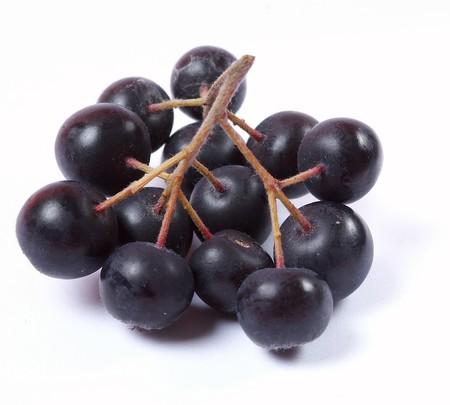 Aronia fruit on white background Stock Photo