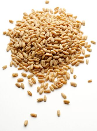 Bunch of wheat grain on white background