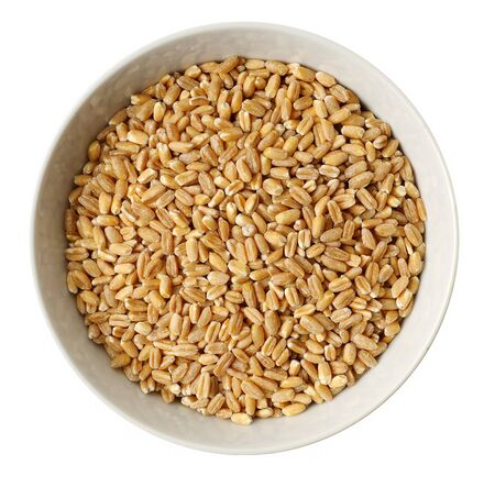 Cup of  wheat Stock Photo