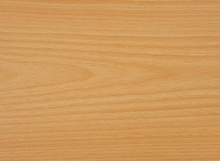Detail of beech tree wood