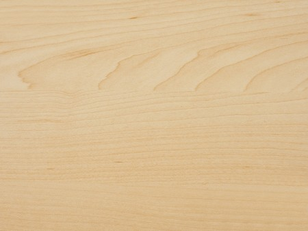 Detail of maple tree wood Stock Photo