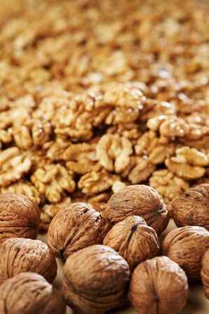 Group of walnut Stock Photo - 4065105
