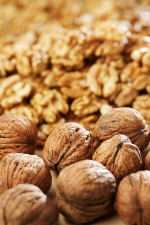 Group of walnut Stock Photo - 4065102