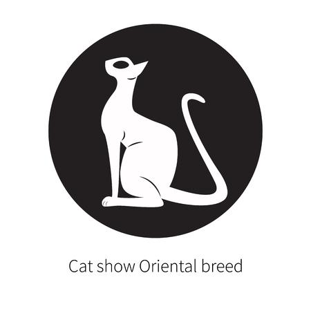 Oriental shorthair cat isolated. Illustration