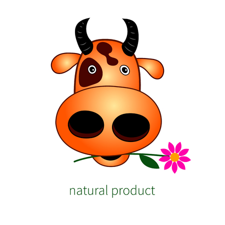 Head of cow. Vector illustration.