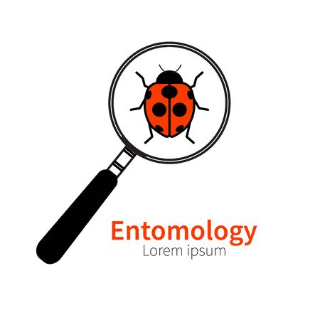 zoology: icon of entomology, biology, zoology. Red ladybug, beetle, bug under magnifying glass. Symbol of research study Illustration