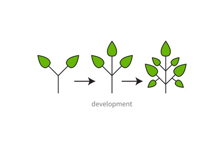 Development, growth, evolution icon Çizim
