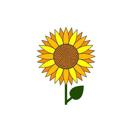 Sunflower icon, summer flower, sunflower oil isolated sunflower. Vector flat illustration
