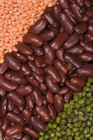gamma: gamma tipo cereales Bean lentejas