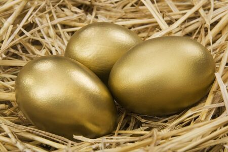 earn more: Gold Nest Egg - Financial Concept   Stock Photo