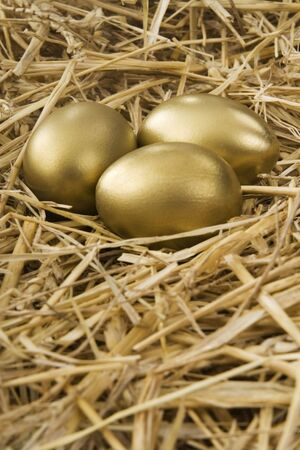 earn more: Three gold eggs, nest from straw on a white background Stock Photo