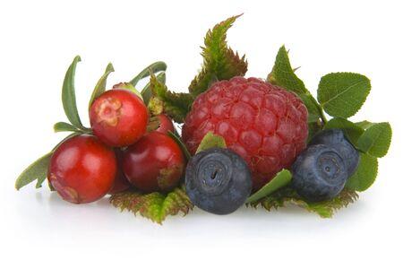bilberries: Bilberries,cranberries and raspberry on white background.  Stock Photo
