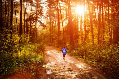 forrest: Jogger running a muddy path in autumn forrest with sun rising up Stock Photo