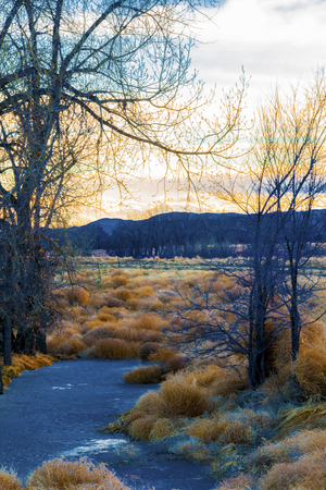 A creek through dried brush and bare trees leads to the sun setting behind mountains.