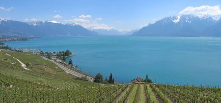 leman: In direction of the Mount Pelerin - Leman Lake - Switzerland - Panorama.