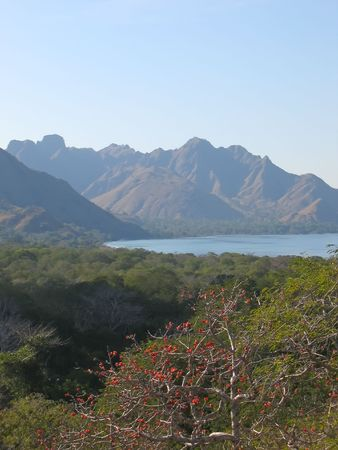 View from the Rinca island to the bay and the mountains - Komodo archipelago - Indonesia. photo