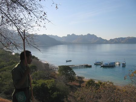 steely: View from the Rinca island to the bay and the sea - Komodo archipelago - Indonesia. Stock Photo