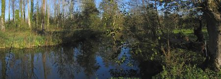 steely: The swamp of Poitevin and one of its river - France - Panorama.