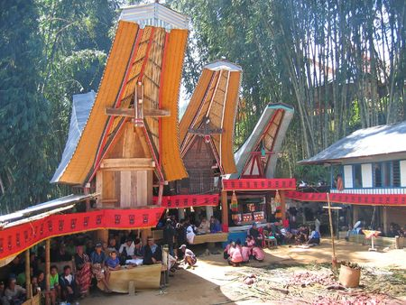 sulawesi: Toraja ceremony in traditional houses - Rantepao - Sulawesi island - Indonesia - Panorama.