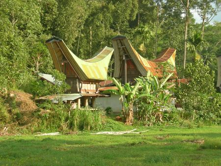 Traditional Toraja houses - Rantepao - Sulawesi island - Indonesia. Stock Photo