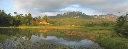 sulawesi: Lake and the ricefields at the sunset from Londa to Kete Kesu - Rantepao - Sulawesi island - Indonesia - Panorama.