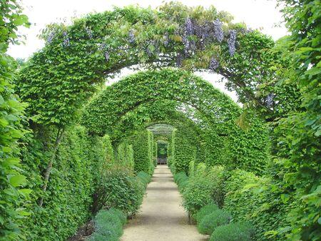 Garden path under flowers arches - Prieure Notre Dame d Orsan - France.