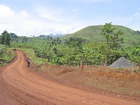 Dirty track spinning between the green hills - Cameroon - Africa.