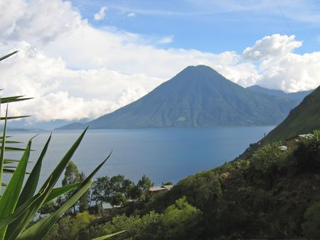 Lake with a volcano and a plam tree - Lake Atitlan - Guatemala. Stock Photo