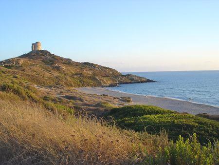 savana: Beach with savana - Barca - Sardinia  - Italy.
