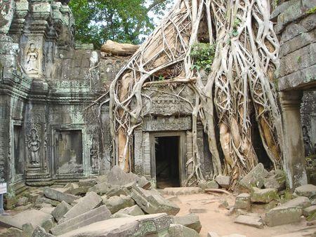 angkor: A tree over old ruin temple -  Ta Prohm - Bayon - Angkor Tom - Cambodgia. Stock Photo