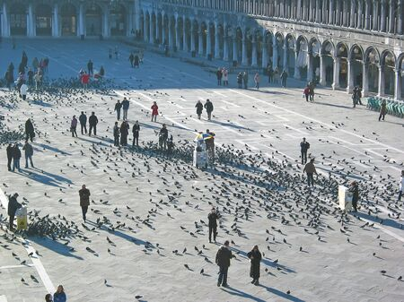 marc: Crowd of pigeon birds and people on a place - Saint Marc place - Venice - Italia.