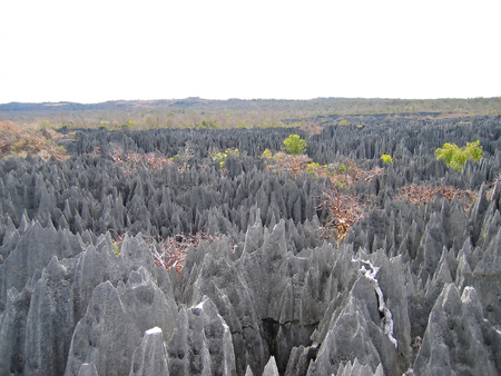 Another large view on the top - Tsingy of Bemaraha Park - Madagascar. Stock Photo
