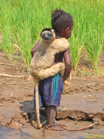 Lemur on the back of a young girl - Madagascar.